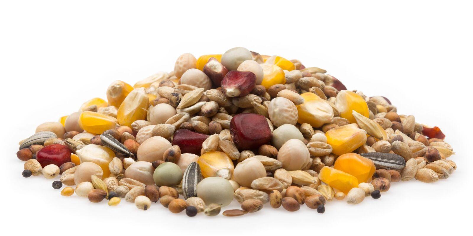 Seeds Samereien